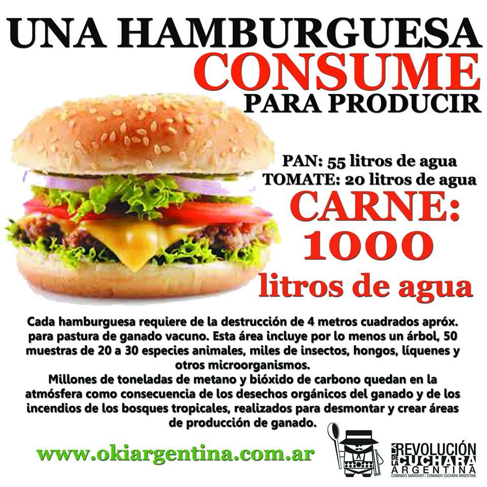 Cuanto cuesta tu hamburguesa por rdlc argentina for Cuanto cuesta un toldo para balcon