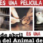 La triste y cruel realidad de los animales en laboratorios.