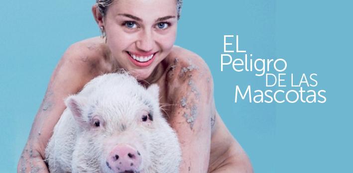 Miley Circus