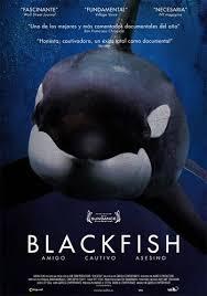 tilikum-blackfish